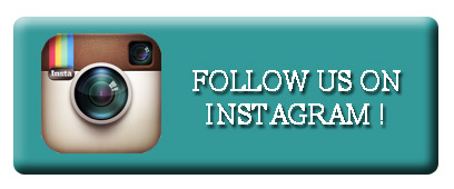 657274-instagram-button-for-stay-in-touch